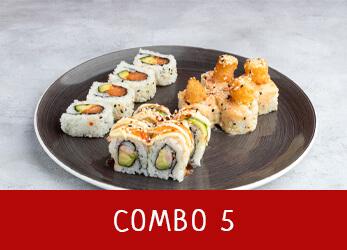 sushi platter combo 5